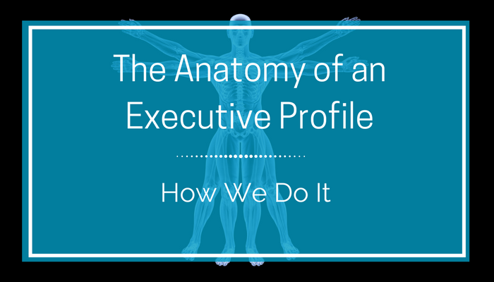The Anatomy of an Executive Profile.png